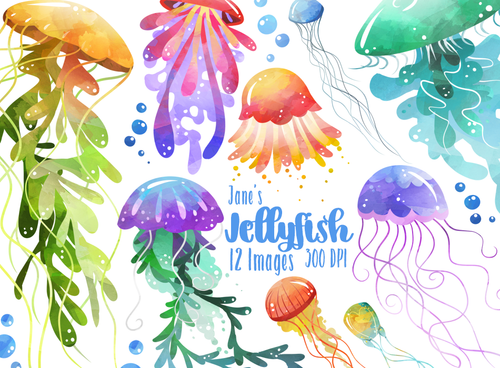 Jellyfish Graphics Set