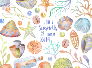 Seashell Graphics Set