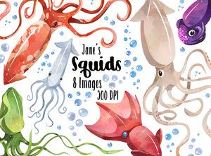 Squid Graphics Set