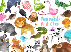 Alphabet Animals Graphics Set