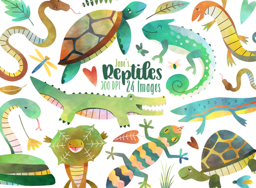 Reptiles Graphics Set