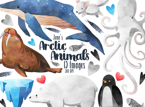 Arctic Animals Graphics Set