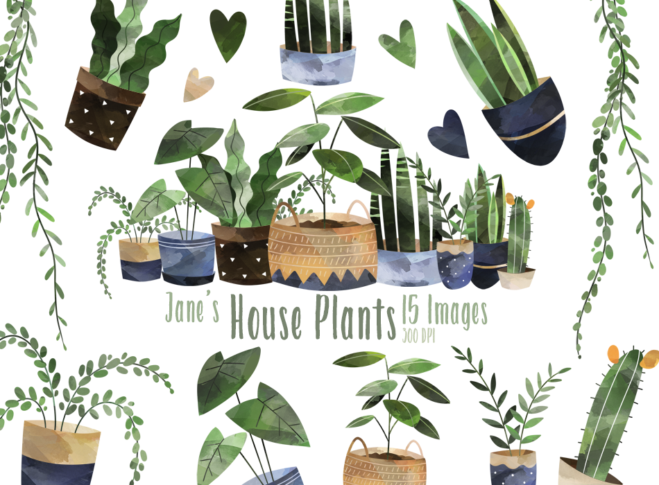 House Plants Graphics Set