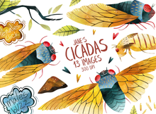 Cicadas Graphics Set