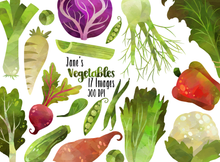 Vegetable Graphics Set