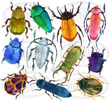 Beetles Graphics Set
