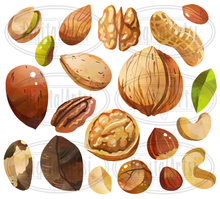 Nuts Graphics Set