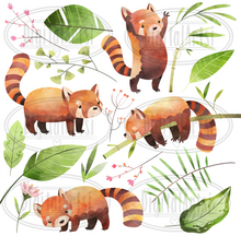 Red Panda Graphics Set