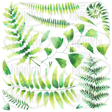 Fern Graphics Set