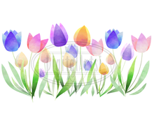 Tulips Graphics Set