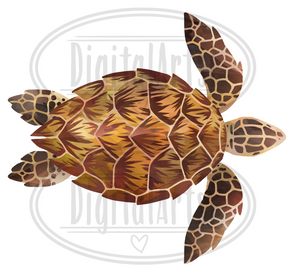 Sea Turtles Graphics Set