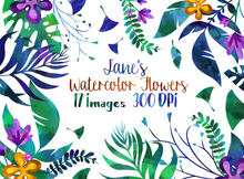 Tropical Floral Plants Graphics Set