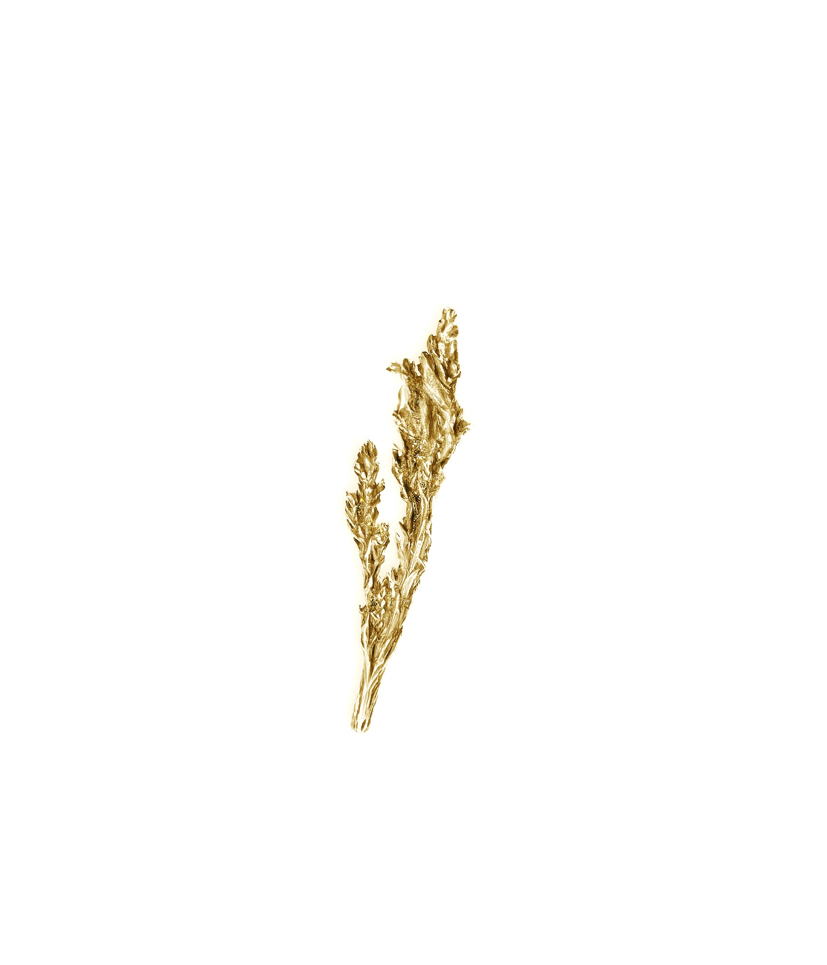 Juniper brooch 18 Kt yellow gold
