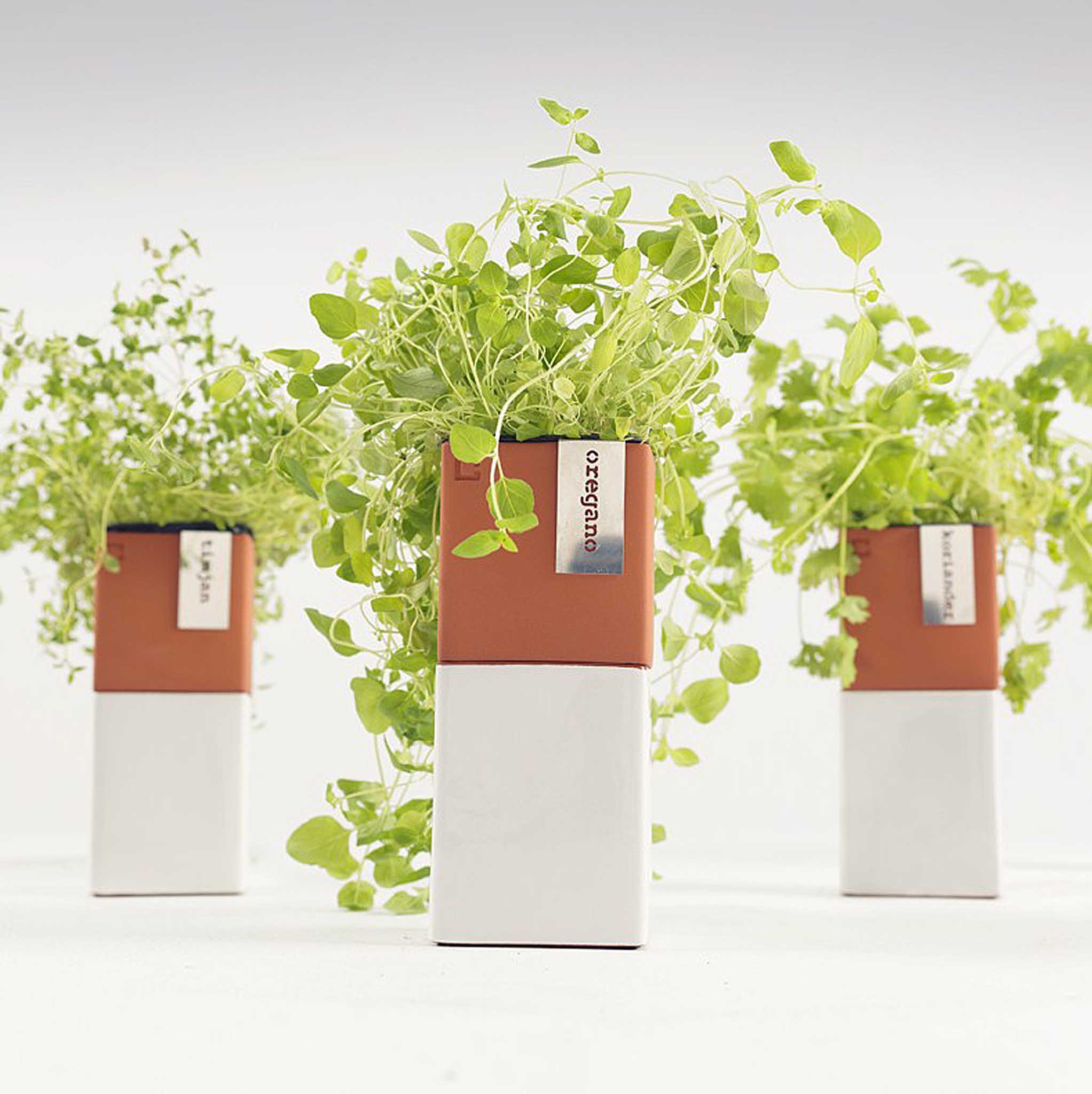 Evergreen is a self-watering pot which is ideal for anyone who doesn't have a green thumb or the time. Evergreen Herb Pot designed to keep herbs fresh.