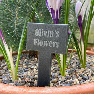 "A personalised small slate sign for marking different plants. The slate has the words ""Olivia's Flowers"" engraved on it."