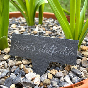 "A personalised rectangular slate tag with a point on the bottom for sticking in the garden soil. The slate has the words ""Sam's daffodils"" engraved in script style lettering."