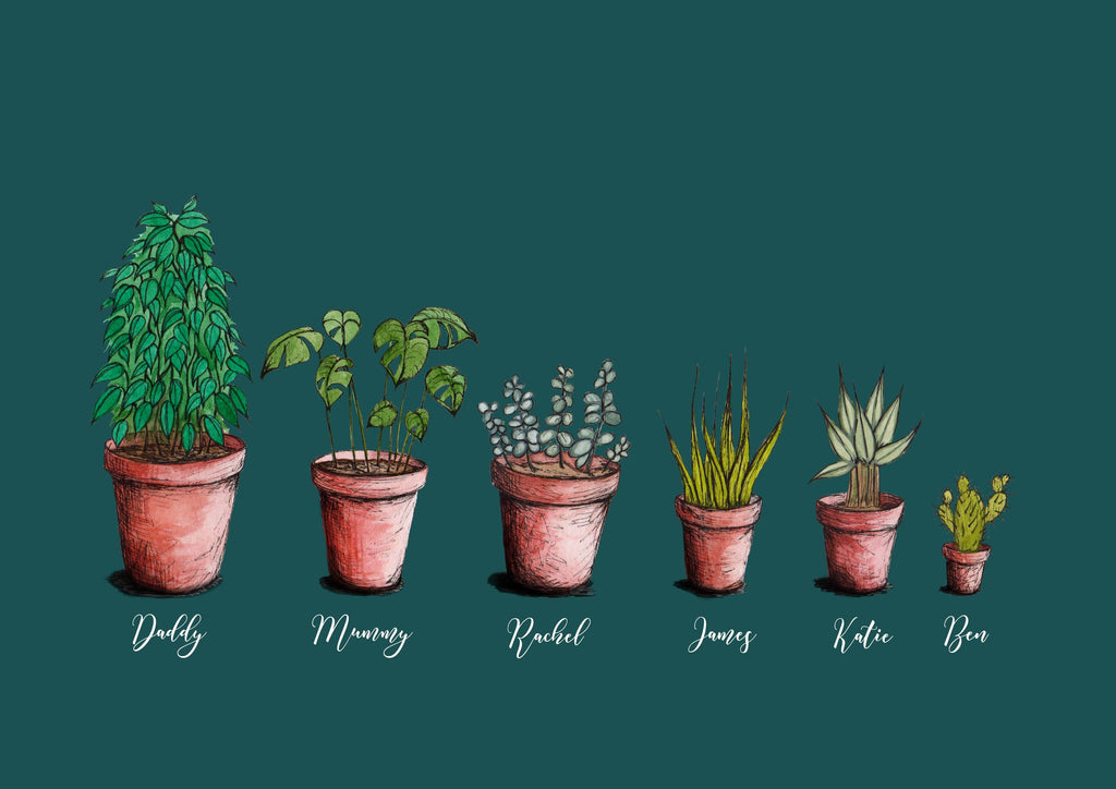 A collection of 6 personalised house plant illustrations on a teal background. This design is printed onto a rectangular placemat