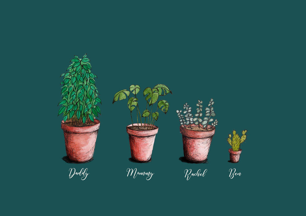 4 personalised houseplants on a teal background, the house plants each have a name below