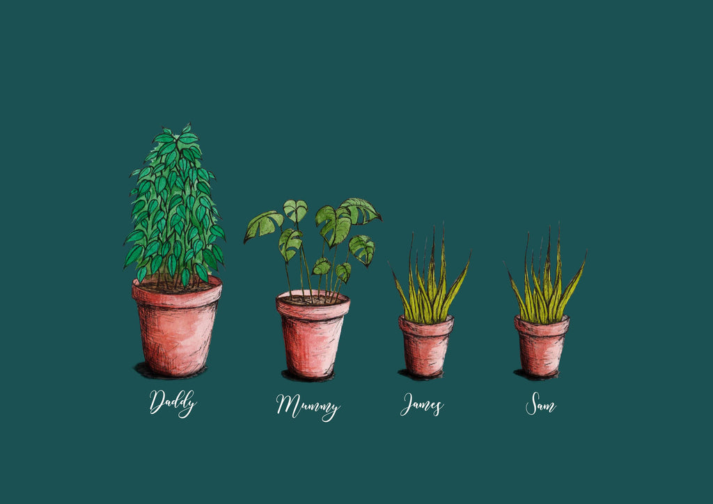 A collection of illustrated personalised house plants on a teal background