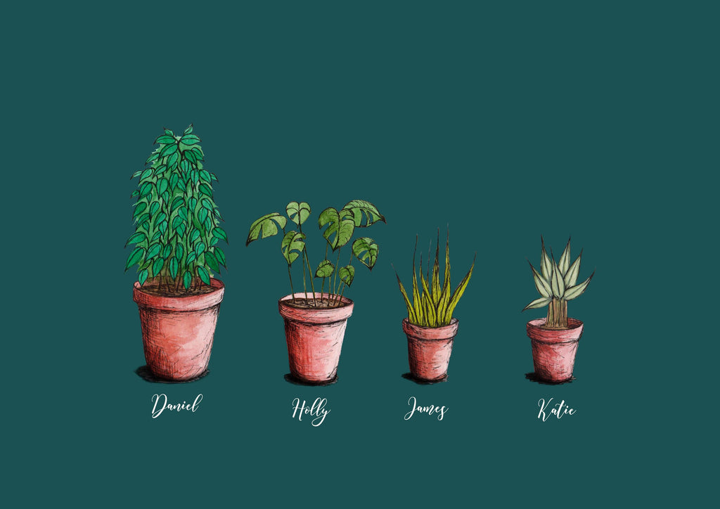 4 personalised house plants with names below