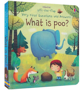 3D lift the flap very first questions and answers board book