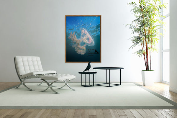 Haekel's Jellyfish - Wood Framed Canvas