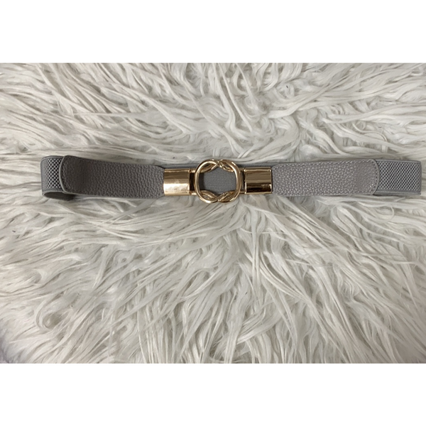 Elastic Belt with Gold Tone Front Clip