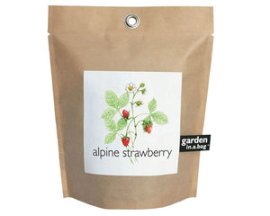 Potting Shed Creations - Alpine Strawberry Garden in a Bag Grow Kit