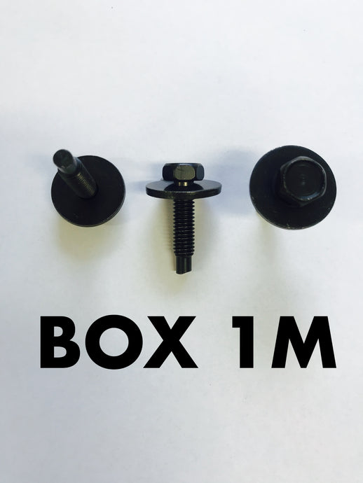 Carclips Box 1M M6 Bolt - Colourfast Auto