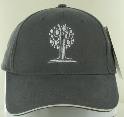 New American Pathways Hat
