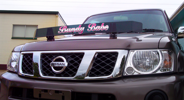 'Bundy Babe' Bug Deflector Name Sticker