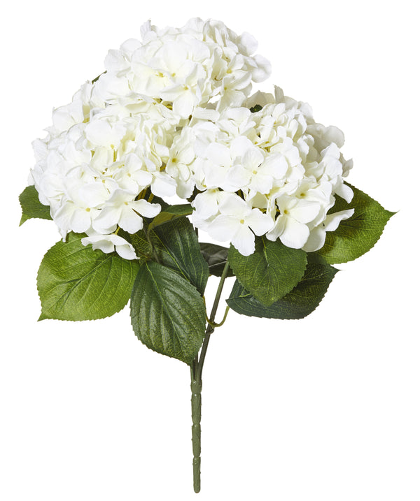 Shop Hydrangea Bush 46cm at Rose St Trading Co