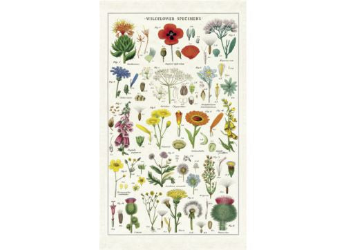 Shop Tea Towel | Wildflower at Rose St Trading Co