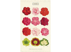 Shop Tea Towel | Fleurs at Rose St Trading Co