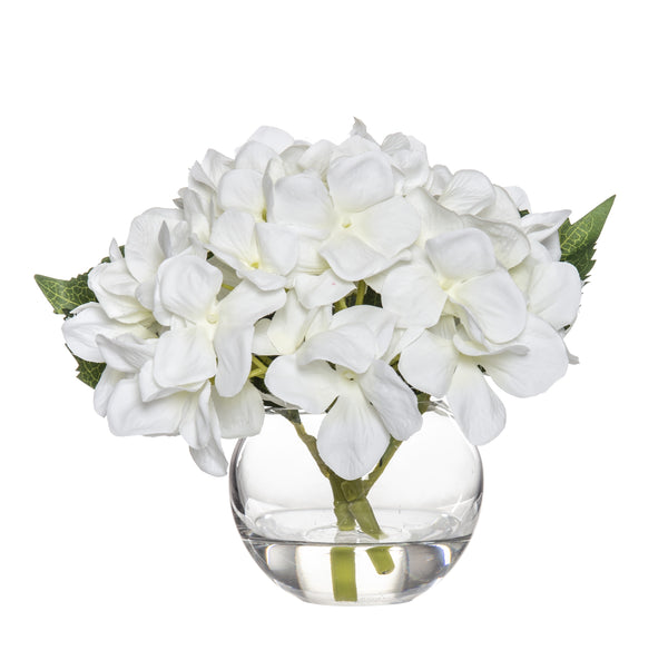 Shop Hydrangea in Sphere Vase 18cm at Rose St Trading Co