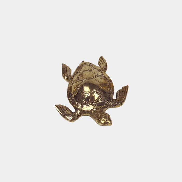 Shop Brass Turtle | Medium at Rose St Trading Co