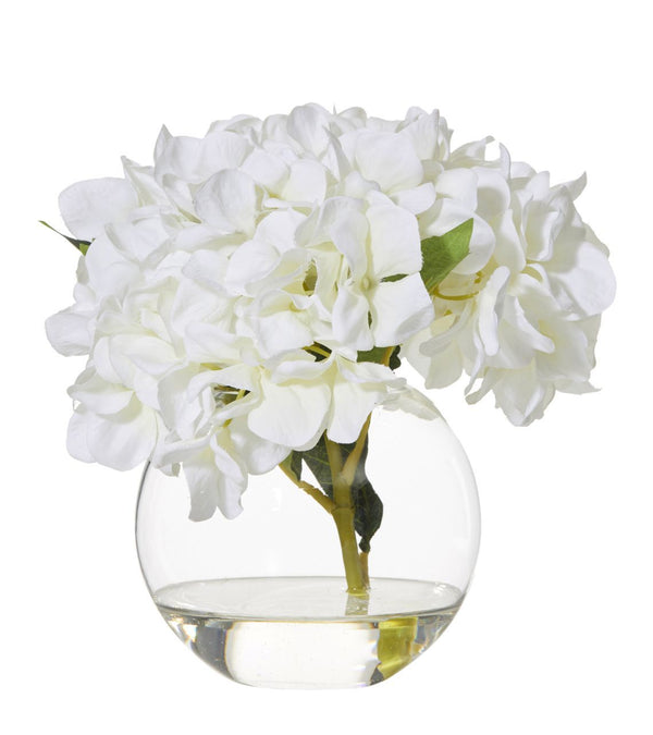 Shop Hydrangea in Sphere Vase 23cm at Rose St Trading Co