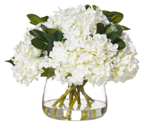 Shop Hydrangea Oriental Ficus Mix at Rose St Trading Co