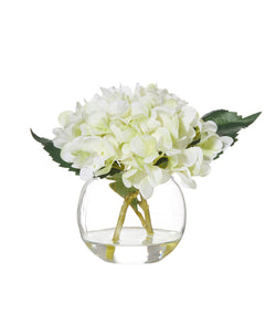 Shop Hydrangea in Glass Bowl at Rose St Trading Co