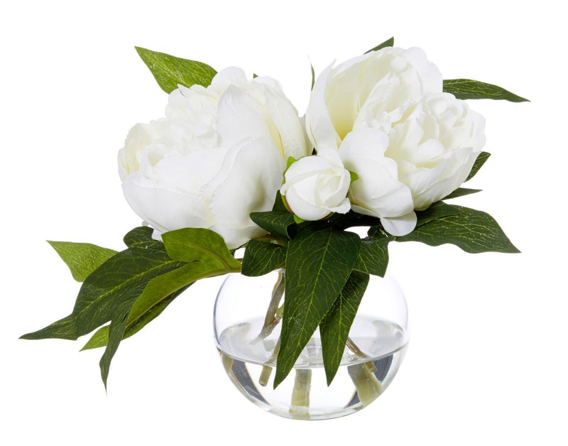 Shop Peony Sphere 20cm White at Rose St Trading Co