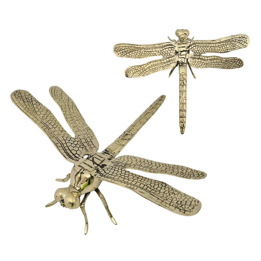 Shop Dragonfly Gold | Medium at Rose St Trading Co