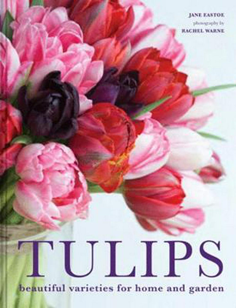 Shop Tulips by Jane Eastoe at Rose St Trading Co