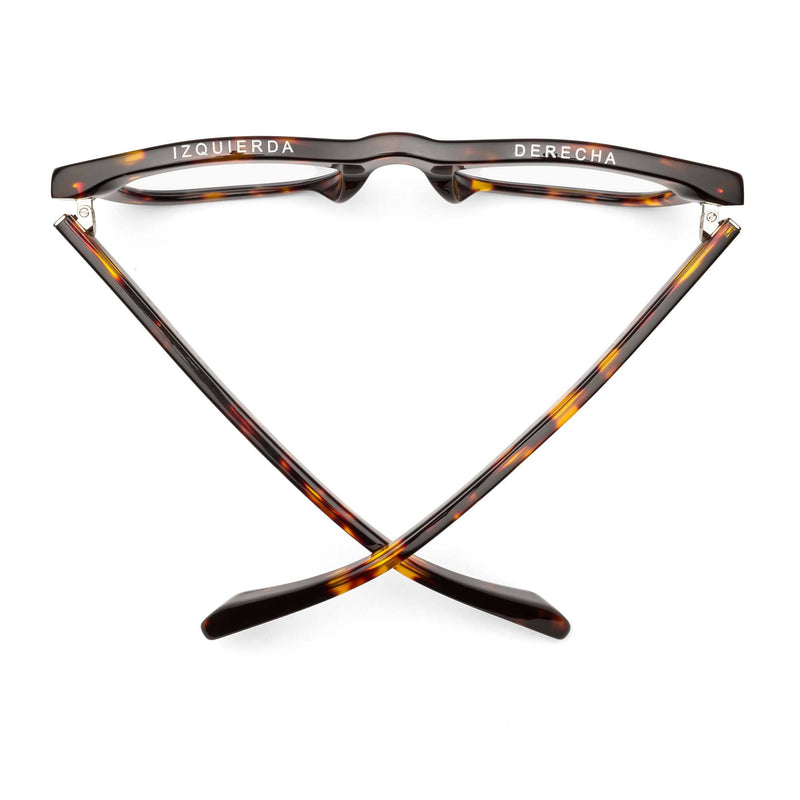 Shop D28- Turtle - Gloss Tortoise at Rose St Trading Co