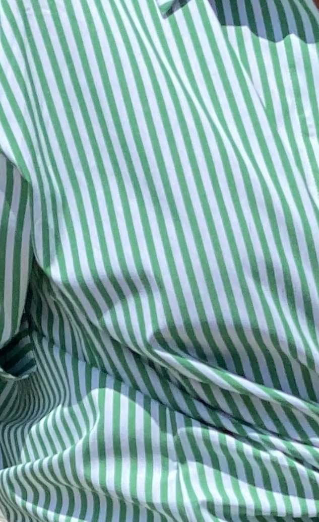 Shop Green Stripe Shirt at Rose St Trading Co