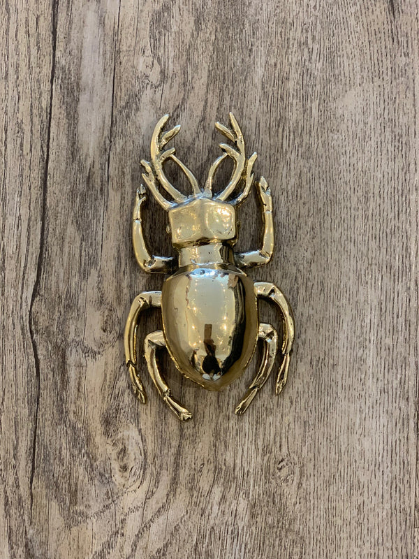 Shop Brass Scarab at Rose St Trading Co