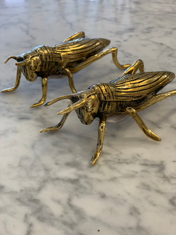 Shop Gold Grasshopper at Rose St Trading Co