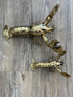 Shop Gold Lobster - Extra Large at Rose St Trading Co