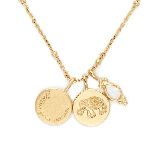 Shop Gold Follow Your Dreams Necklace at Rose St Trading Co