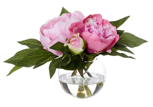 Shop Peony in Sphere Vase - Bright Pink at Rose St Trading Co