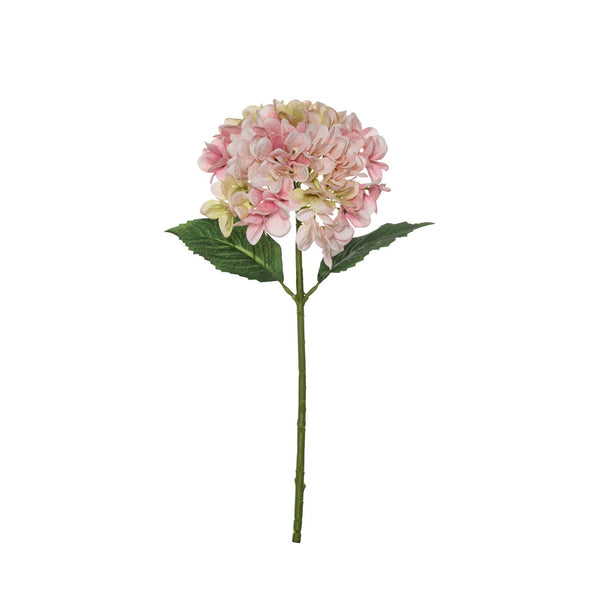 Shop Garden Hydrangea Stem | Pink at Rose St Trading Co